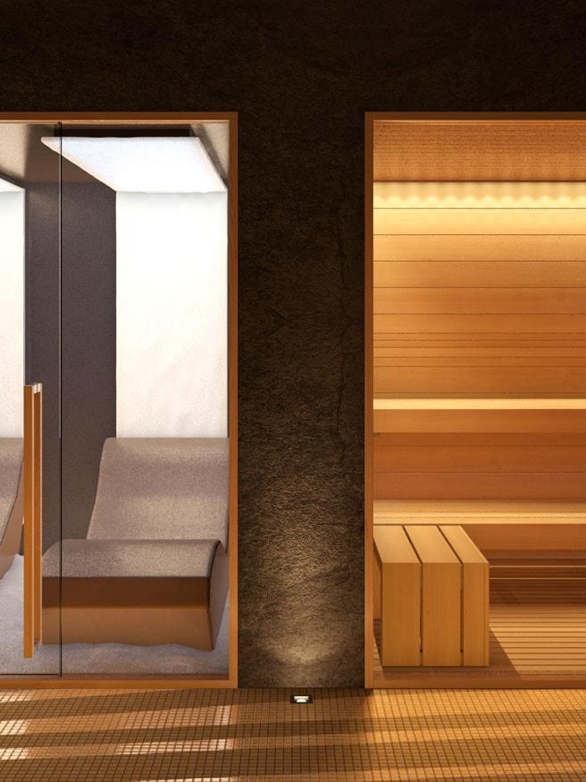 sauna-evolution-e-sale