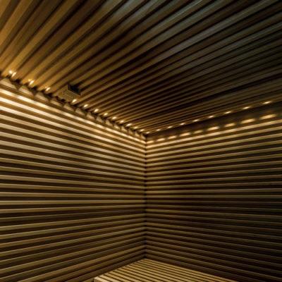 sauna-con-luce-perimentrale-a-soffitto